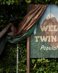 Sky Ferreira, Trent Reznor et Eddie Vedder au casting de Twin Peaks