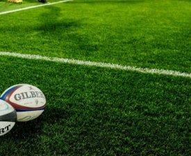 Rugby - Coupe du Monde 2017(U20) : Les Bleuets avec les Springboks et les Pumas