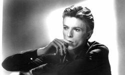Non, les cendres de David Bowie n'ont pas été répandues au Burning Man