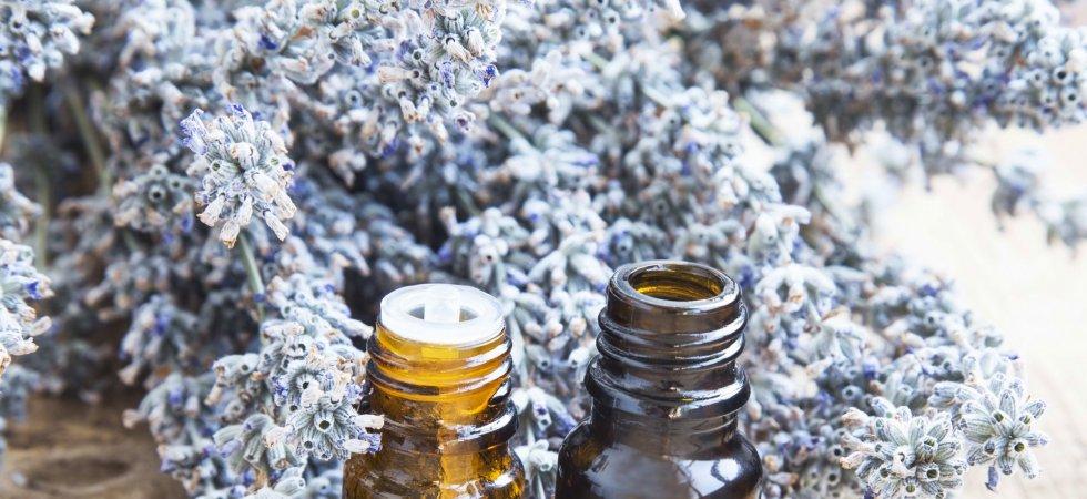 Zoom sur l'aromathérapie et ses vertus