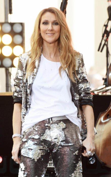 Céline Dion donne un concert lors de sa participation à l\