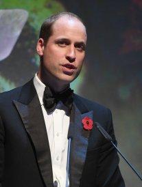 Le prince William nommé pour un prix LGBT