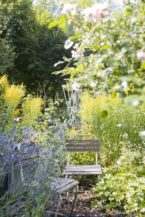 Un jardin bucolique où s\