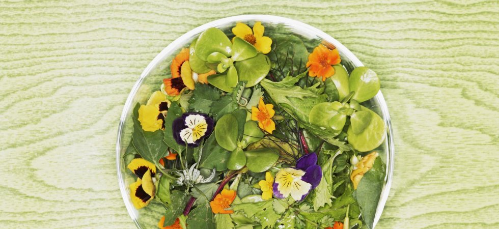 Fête des mères : comment cuisine-t-on les fleurs comestibles ?