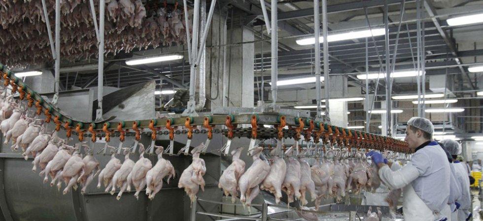 Viande brésilienne avariée : Bruxelles réclame des garanties !