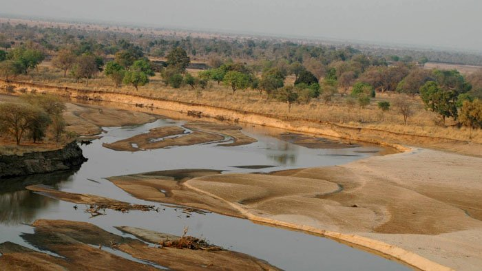 Correspondances sauvages en Zambie