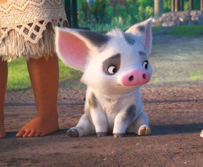 Disney : à quoi servent les personnages un peu bêtes ?