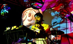 Animal Collective soutient la cause LGBT