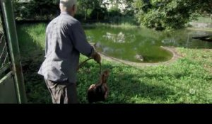 River Monsters - S6E02 - VF -  Replay