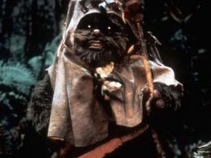 Star Wars 7 : l'Ewok Wicket de retour ?