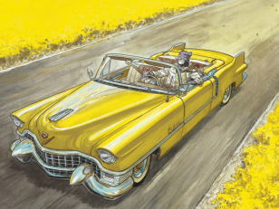 Blacksad, Billy The Cat, Pif et Hercule... 10 chats héros de bande dessinée