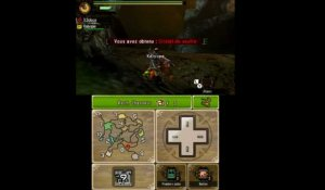 Monster Hunter 4 Ultimate : Chasse au cristal