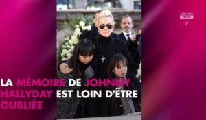 Johnny Hallyday : Laeticia Hallyday se rend tous les jours sur sa tombe