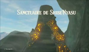 Zelda Breath of the Wild : Sanctuaire Shibe'Nyasu