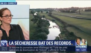 La sècheresse bat des records