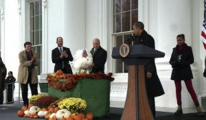 Obama gracie une dinde pour Thanksgiving