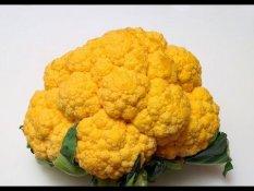Comment Congeler Et Conserver Le Pesto Hd Sur Orange Videos