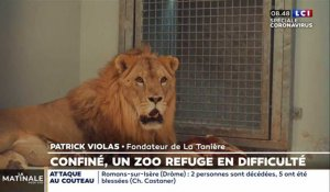 Confiné, un zoo-refuge en difficulté