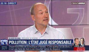 Pollution : l'Etat jugé responsable
