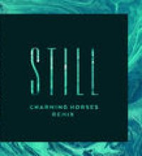 Still (Charming Horses Remix)