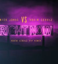 Right Now (Robin Schulz VIP Remix)