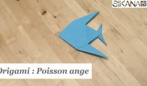 Origami : Comment faire un poisson ange en papier ? - HD