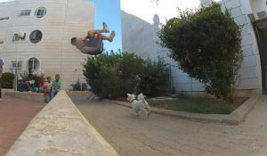 Parkour vs Chien (FAIL)