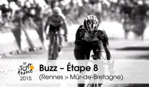 Buzz du jour / Buzz of the day - Étape 8 (Rennes > Mûr-de-Bretagne) - Tour de France 2015