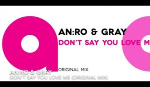 AN:RO & GRAY - Don't say you love me (Original mix)