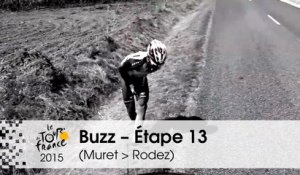 Buzz du jour / Buzz of the day - Étape 13 (Muret > Rodez) - Tour de France 2015