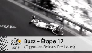 Buzz du jour / Buzz of the day - Van Garderen abandons and Pinot & Contador crashed - Étape 17 (Digne-les-Bains > Pra Loup) - Tour de France 2015