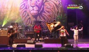 JUNIOR MARVIN'S WAILERS live @ Main Stage 2015