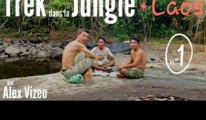 LAOS : trek dans la jungle - parc national de Xe Pian -1-