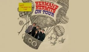 The Herman's Hermits - Don't Try To Hurt Me