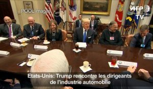 Trump rencontre les dirigeants de l'industrie automobile