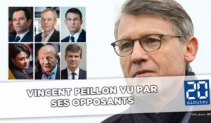 Vincent Peillon vu par ses opposants