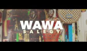 Wawa Salegy Ft. Serge Beynaud - Fusion - clip officiel
