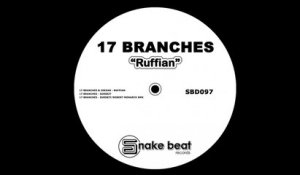 17 Branches, Joedan - Ruffian - (Original Mix)