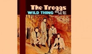 The Troggs - Wild Thing - Vintage Music Songs