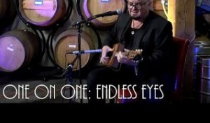 ONE ON ONE: Alain Johannes - Endless Eyes August 16th, 2016 City Winery New York