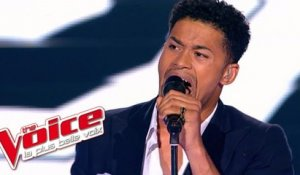 Serge Gainsbourg - Comme un boomerang | Thomas Mignot | The Voice France 2012 | Prime 3