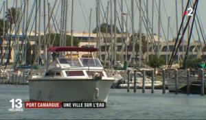 Port-Camargue : ballet incessant dans le plus grand port de plaisance d'Europe