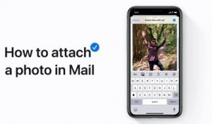 How to attach a photo in Mail in iOS 13 on your iPhone, iPad, or iPod touch - Apple Support
