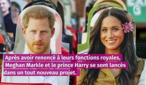 Meghan et Harry : leurs ambitions hollywoodiennes