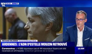 "Affaire Mouzin: pour l'avocat de Monique Olivier, ""la question de l'ADN est secondaire"""