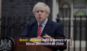 Brexit : Johnson agite la menace d'un blocus alimentaire en Ulster