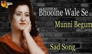 Bhoolne Wale Se | Audio-Visual | Superhit | Munni Begum