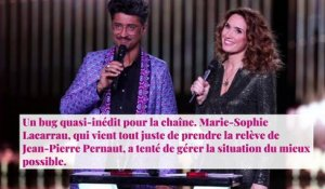 Bug du 13h de TF1 : Marie-Sophie Lacarrau raconte les coulisses de l'incident