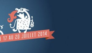 Vieilles Charrues 2014 : le best of