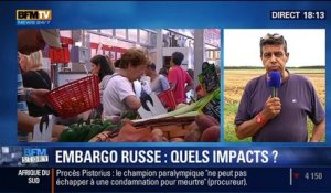 BFM Story: Embargo russe: quels impacts pour l'Europe ? - 07/08